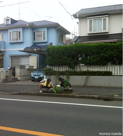 limpeza ruas 2